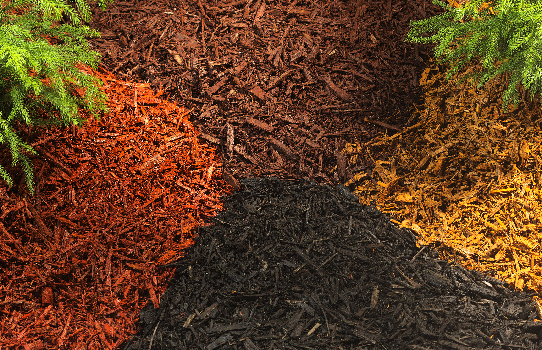 Benefits of Mulch: What, Where, & Why?